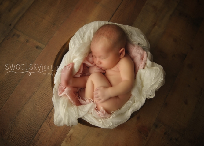 Atlanta Newborn Baby Session