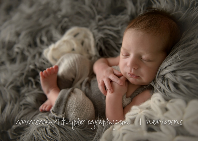 Atlanta Newborn Mini Session