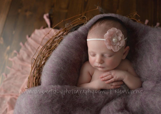 Newborn Baby Photographers Atlanta