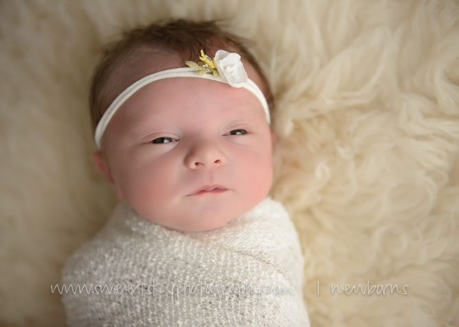 Beautiful Newborn Session