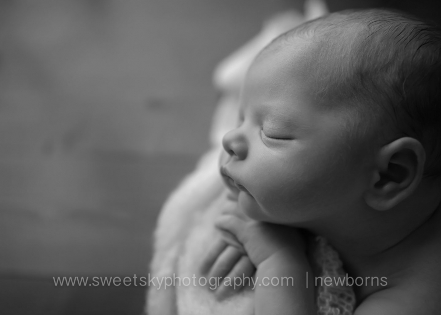 Gorgeous Newborn Photography Session