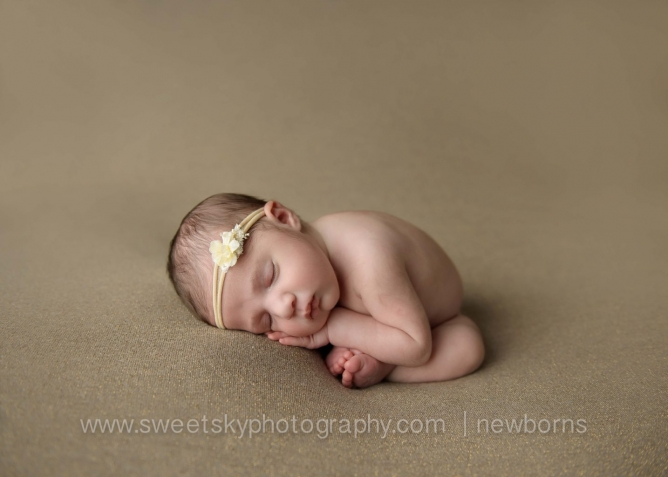 gorgeous princess newborn session