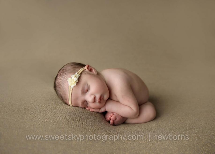 gorgeous princess newborn session